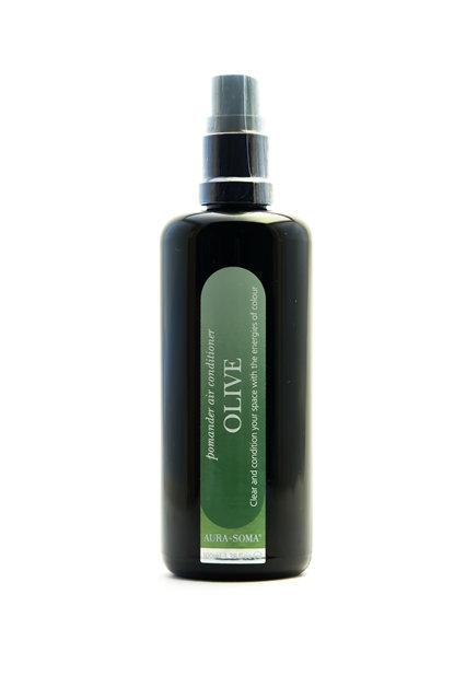 Оливковый помандер спрей