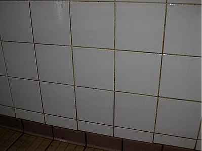 Wall Tile & Grout - Before