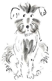 dog2-2-copy.jpg