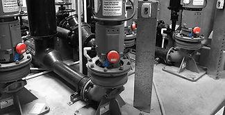 FitMachine-WaterPlant-Optimised.jpg