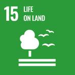 House of Marketing SDG 13 Life On Land