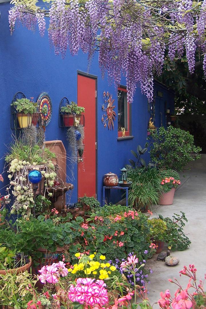 Frida Kahlo Inspired Backyard
