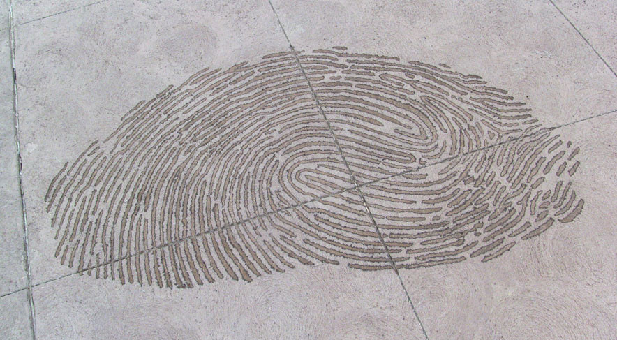 Staining - Fingerprint 3164
