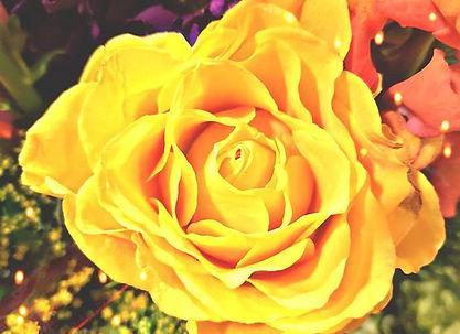 My body opens like a flower in bloom._🌻