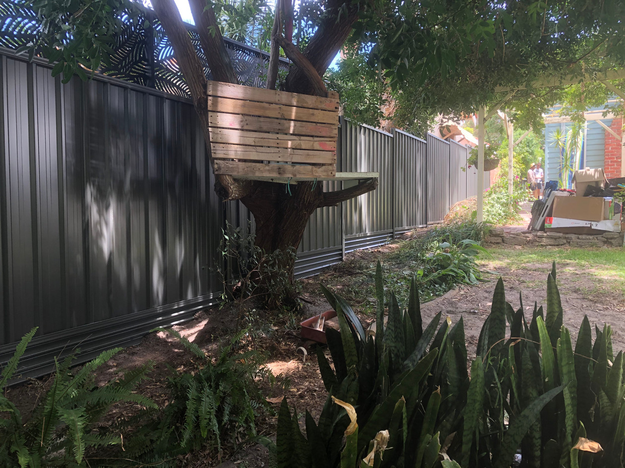 Colorbond Fence, Bassendean