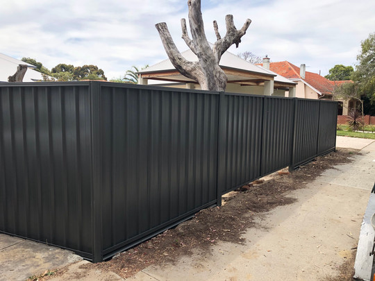 Colorbond Fence and Gate, Daglish
