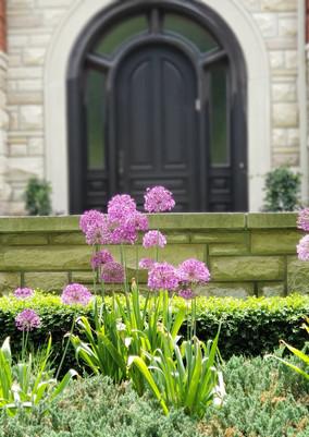 Allium Entry
