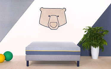 5.3.2 Ted overiew, matelas, sommeil club