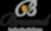 Bruand_logo_9b9e5c1c-22c0-4887-b0fa-89ea