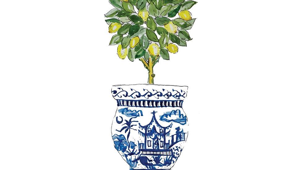Lemon Tree Chinoiserie Topiary print