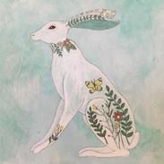 Springtime rabbit