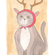 Cat in antlers