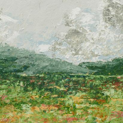 """""""Meadow in Bloom"""""""