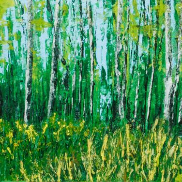"""""""Frewsburg Woods"""""""