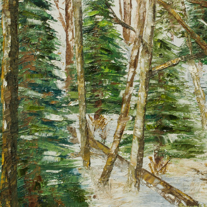 """""""Winter in the Woods"""""""