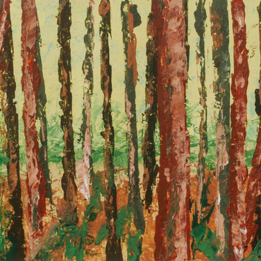 """Light Through the Trees"""
