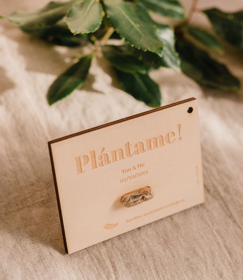 plantame.jpg