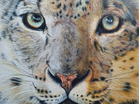 Snow Leopard is finished!!!