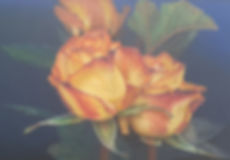 9. Yellow Roses.jpg