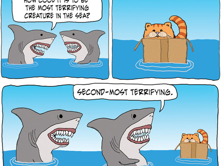 The most terrifying creature in the sea ... and sharks