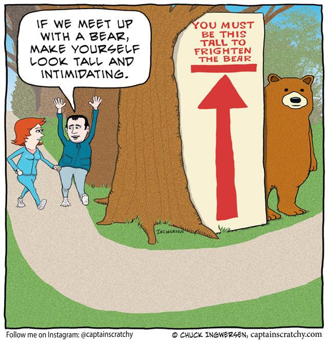 funny bear waiting for hikers cartoon