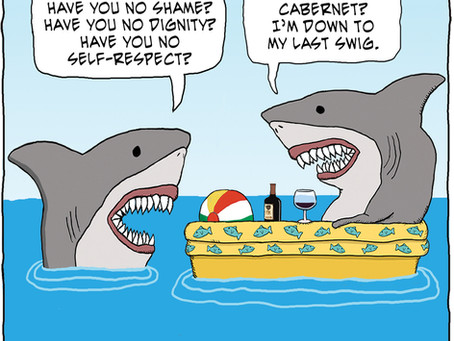 Shark with no shame
