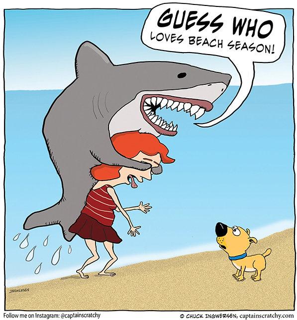 funny guess who shark cartoon