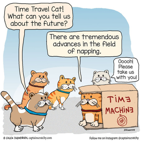 Time Travel Cat