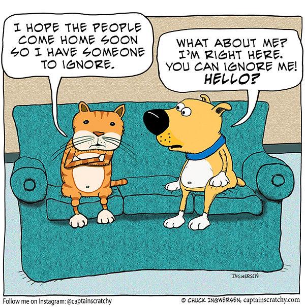 funny cat ignoring dog cartoon