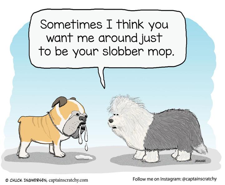 Slobber Dog and Slobber Mop