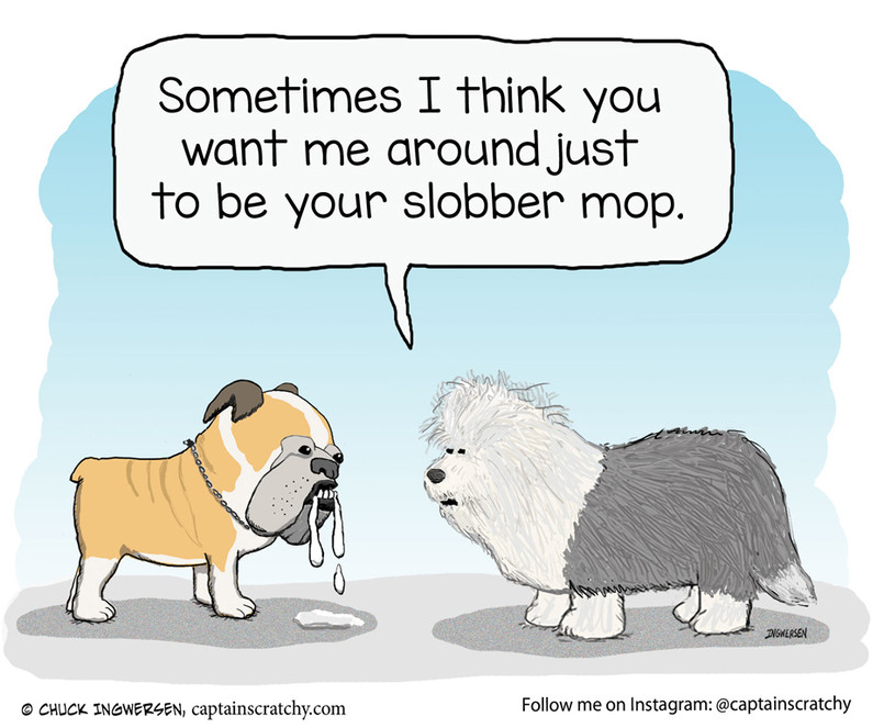 Slobber Dog and Slobber Mop