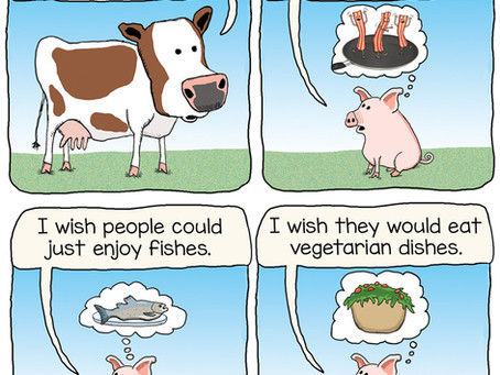 A cow's poem for a little pig