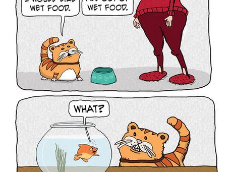 Wet Food