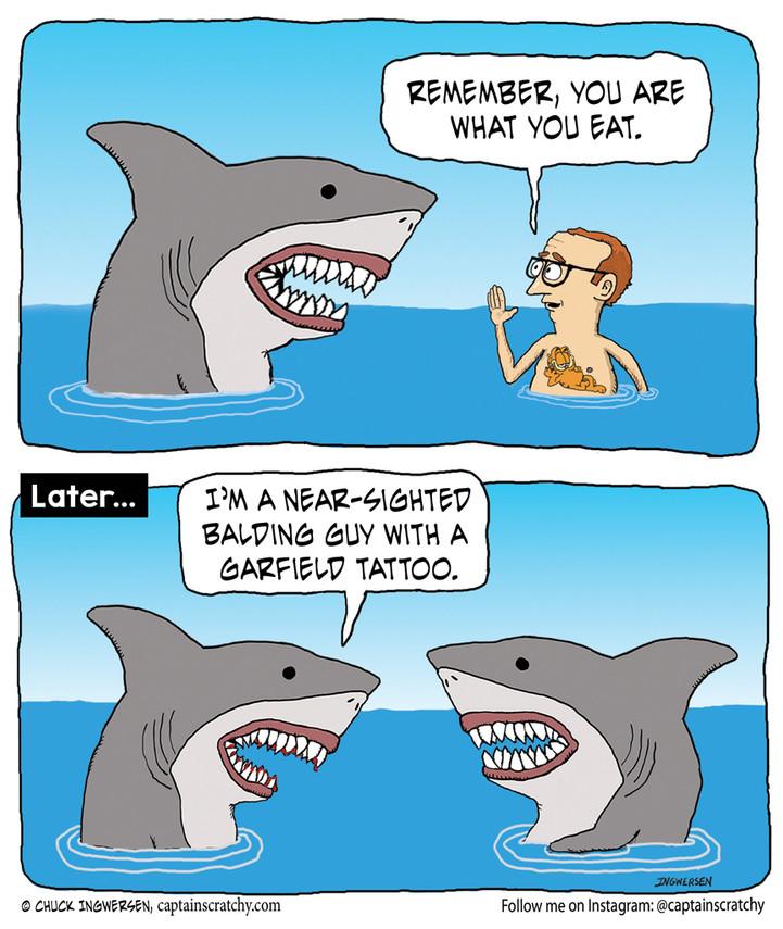 A shark is what he eats