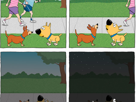 Dogs hope for pie in the sky