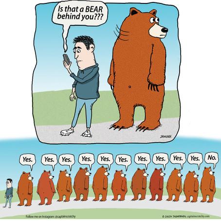 Bear Behind You