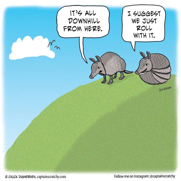 It's all downhill for armadillos