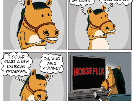 A Horse Day