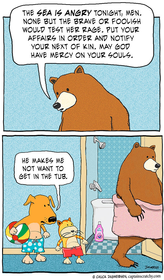 funny dog, cat and bear cartoon