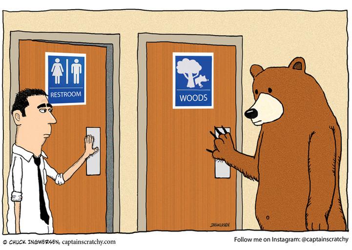 A bear walks into a restroom ...
