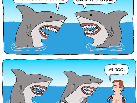 Glad that Shark Week has ended