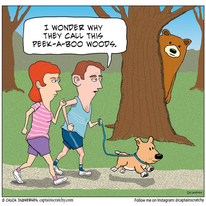 Hiking in Peek-a-Boo Woods