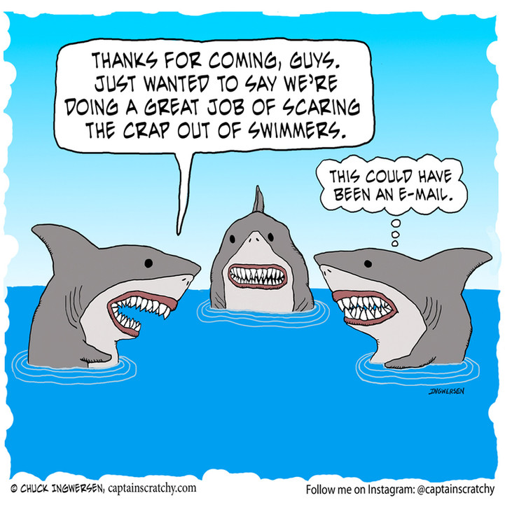 Another unnecessary shark meeting