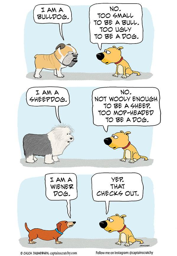 funny dog breeds cartoon