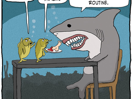 They're grilling the shark