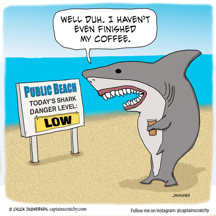 Wait until the shark finishes its coffee