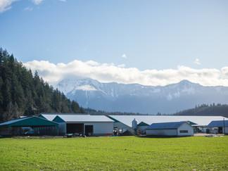 Colbrit Farms