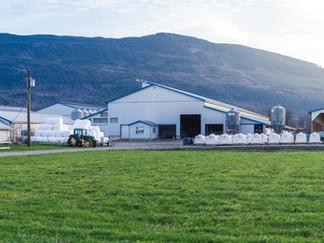 Dicklands Farms