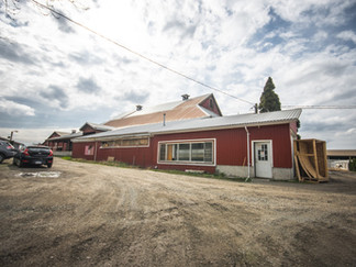 Randon Farms