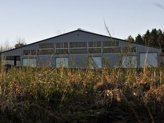 Daldas Farms